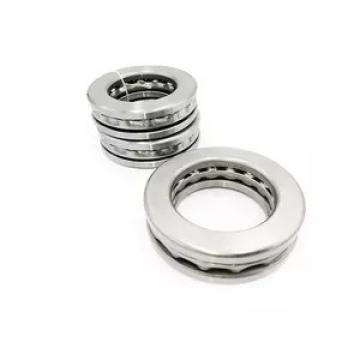 INA F45698 NeedleRollerBearings