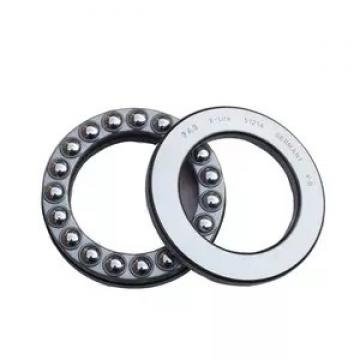 INA F45087 NeedleRollerBearings
